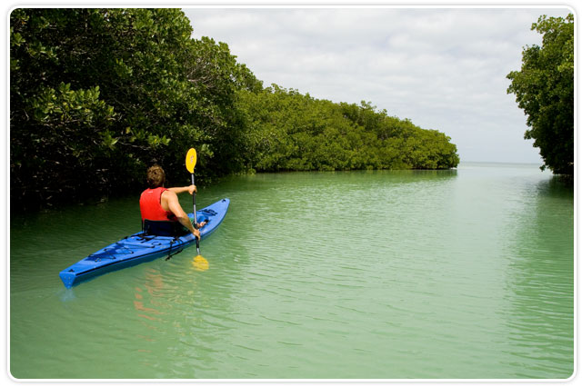 Best Kayak Rentals South Florida Ultimate Florida Tours